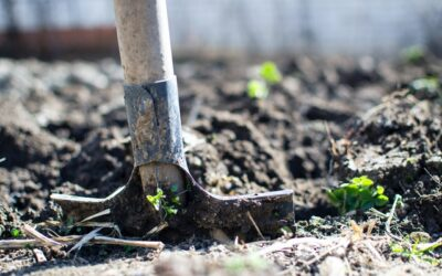 Gör trädgårdsarbetet lättare för dig